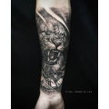LION_TATTOO_BY_CYRIL_PERRIOLLAT